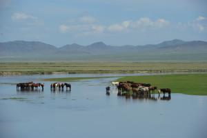蒙古旅游图片 384